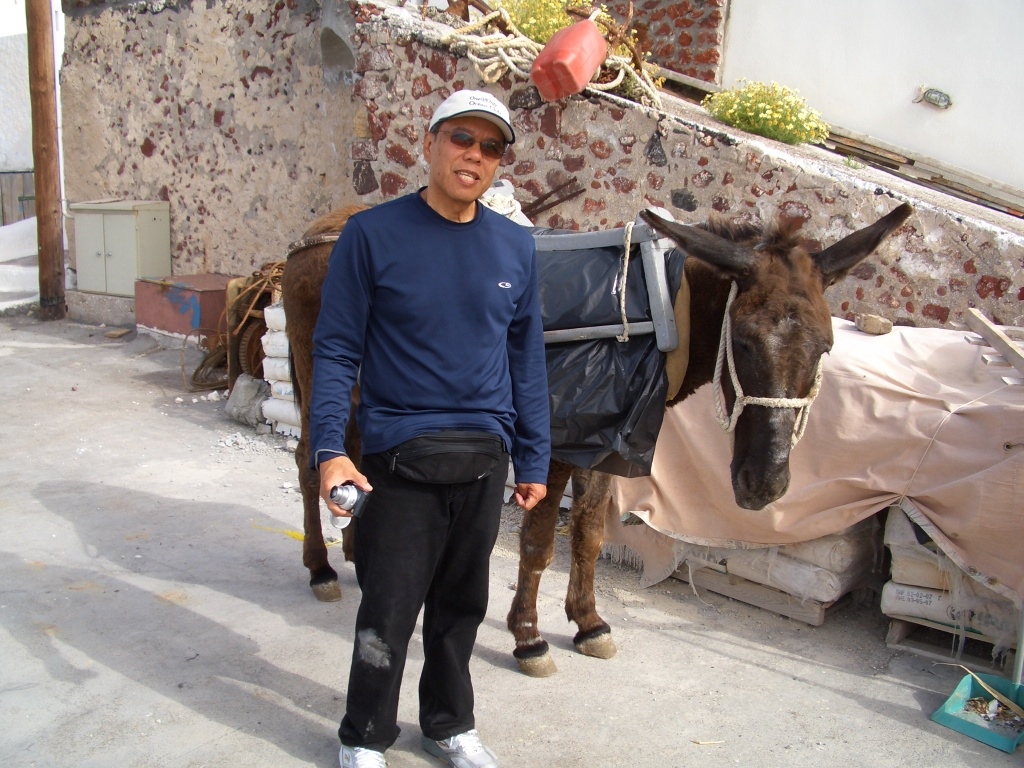 dad and the donkey